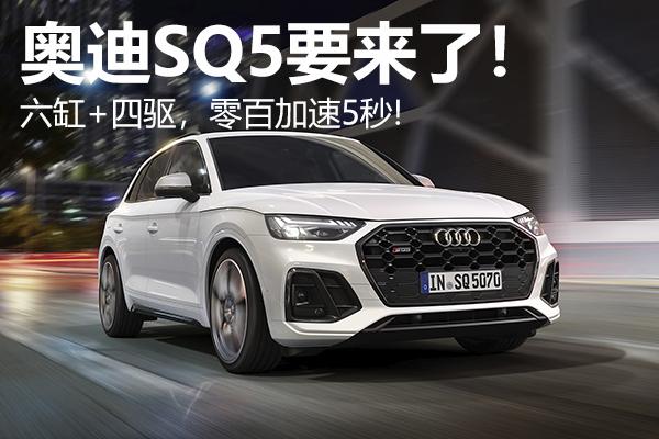 奥迪SQ5要来了!六缸+四驱,零百加速5秒