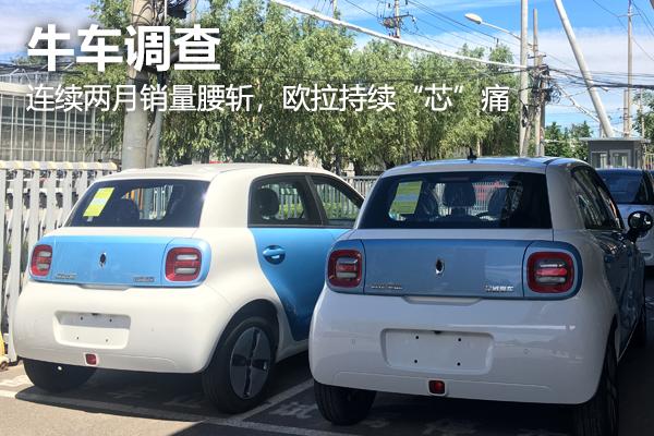 """【牛车调查】连续两月销量腰斩,欧拉持续""""芯""""痛"""